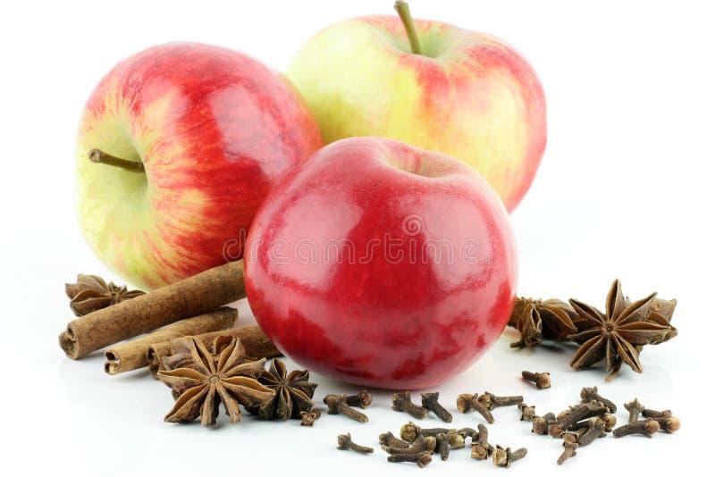 Apple, Zimt, Sternanis. lizenzfreie stockbilder
