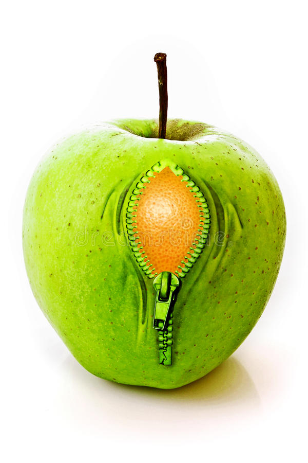 Download Apple with  zipper stock photo. Image of metal, green - 12580372