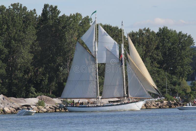 Appledore dropp - högväxt skepp royaltyfri bild