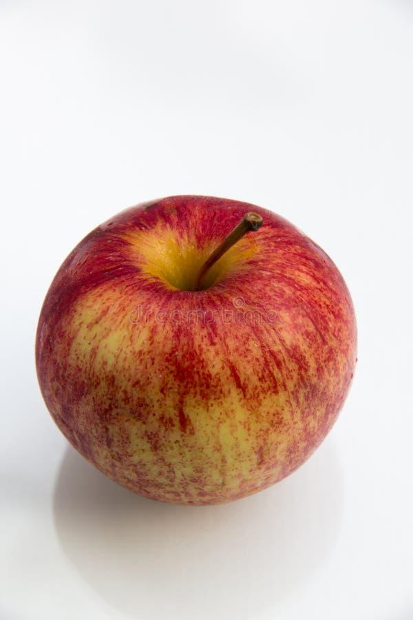 Download Appleon De Gala Sur Un Fond Blanc Photo stock - Image du fond, arbre: 45351158