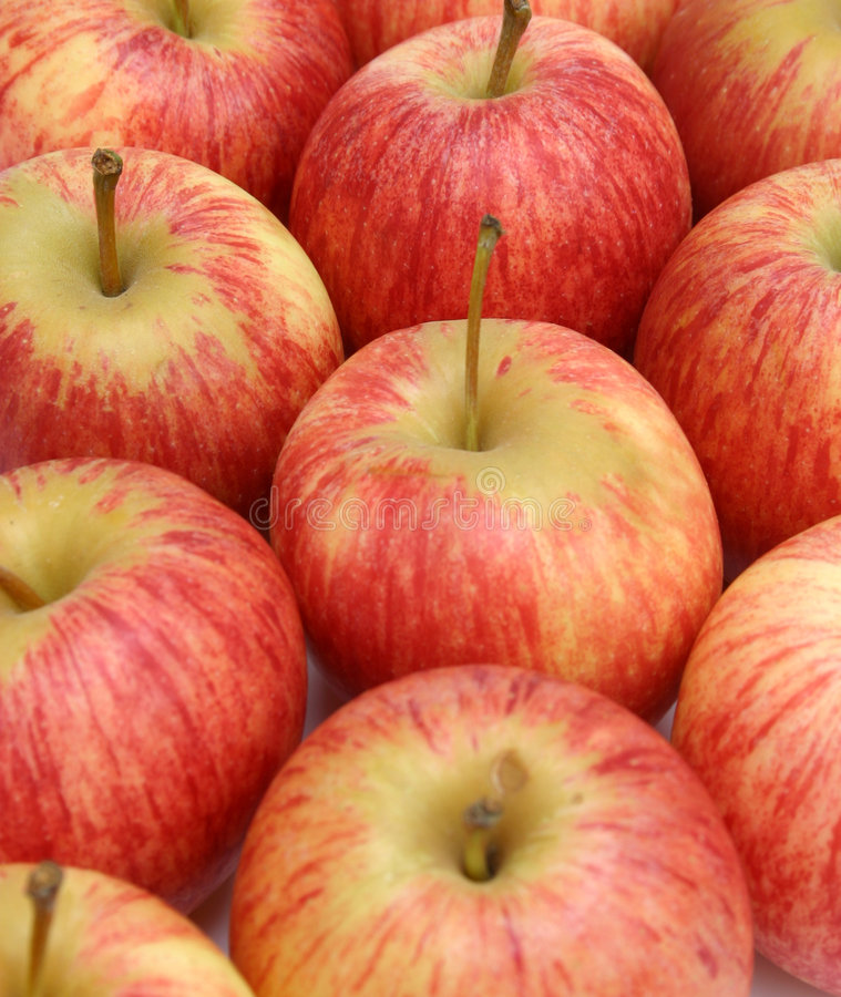 Download Apples stock image. Image of fruit, hunger, nutrient, juicy - 108427