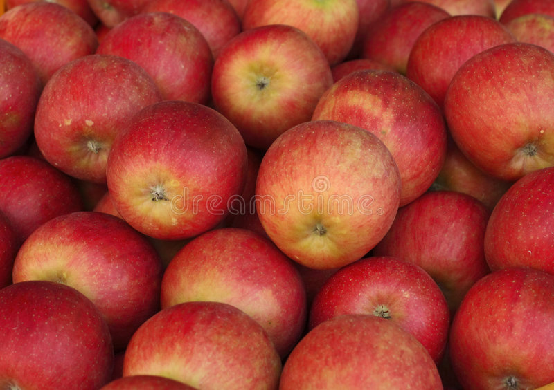Download Apples stock photo. Image of diet, nature, vitamins, food - 1315348