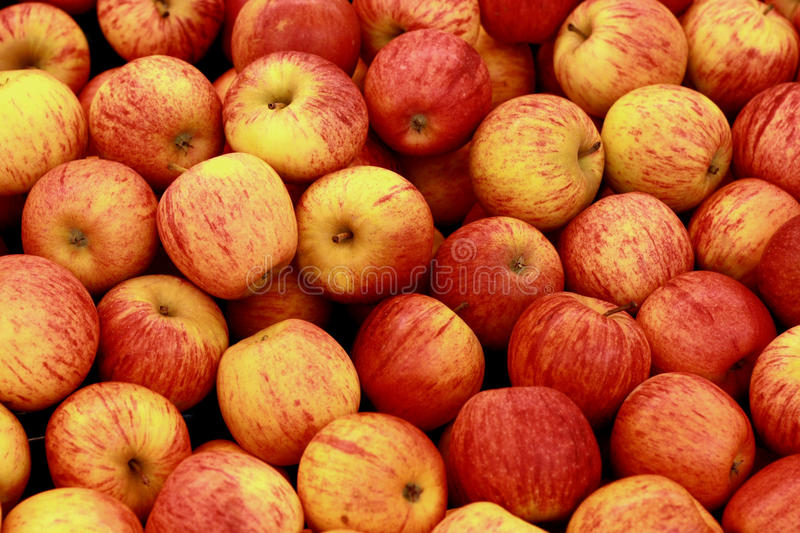 Apples. In red mixed with yellow color