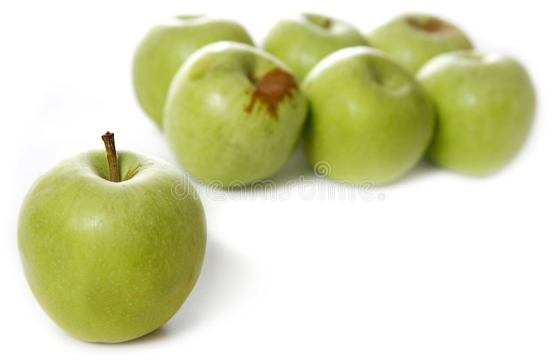Download Apples stock photo. Image of fresh, organic, sweet, natural - 1725710
