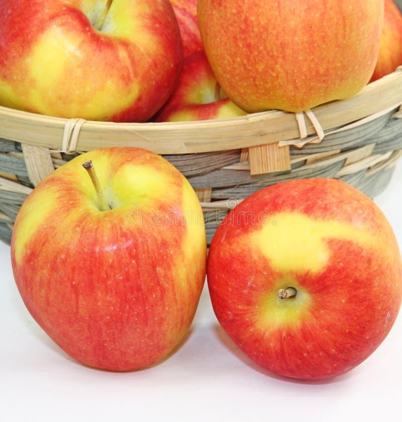 Download Apples stock photo. Image of sweet, food, produce, crisp - 18746148