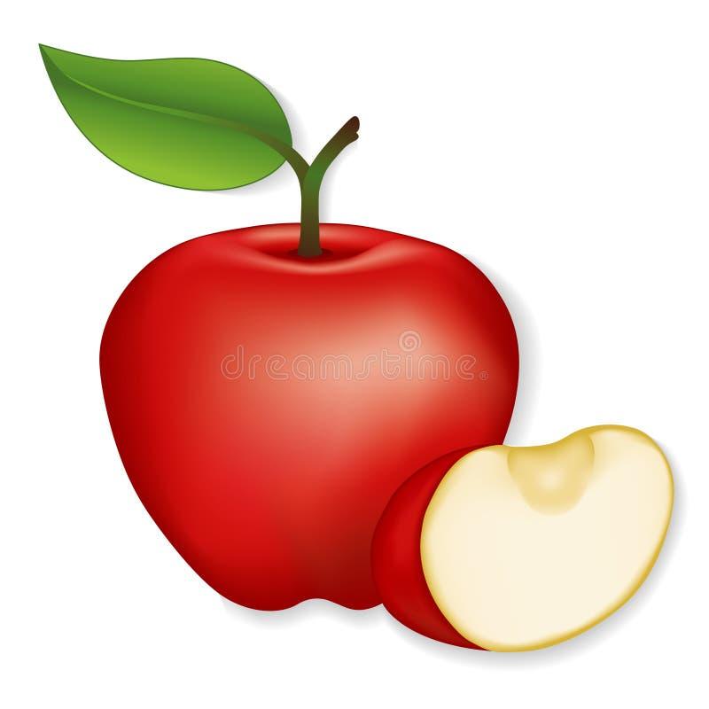Apples. Fresh Garden Apple and Apple Slice. Illustration isolated on white. EPS8 organized in groups for easy editing vector illustration