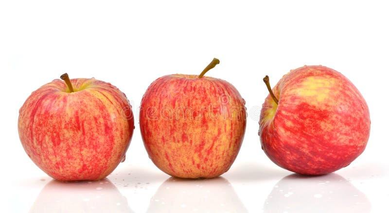 Download Apples stock image. Image of white, eating, freshness - 24608317