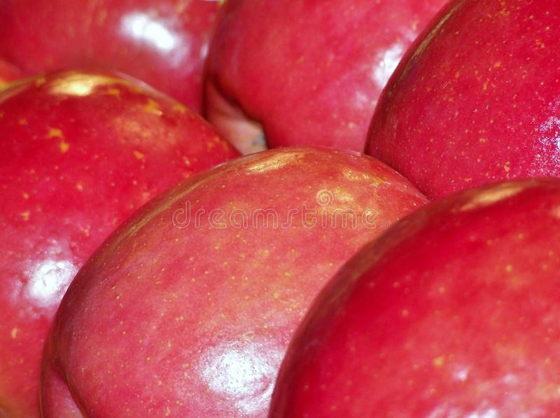 Download Apples stock image. Image of pair, apple, isolated, food - 26549963