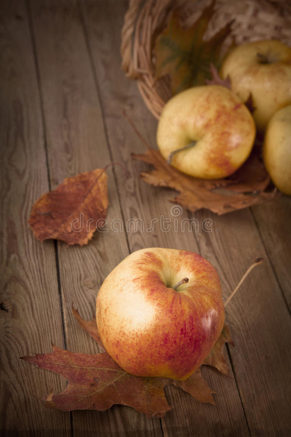 Download Apples Stock Photography - Image: 27620662