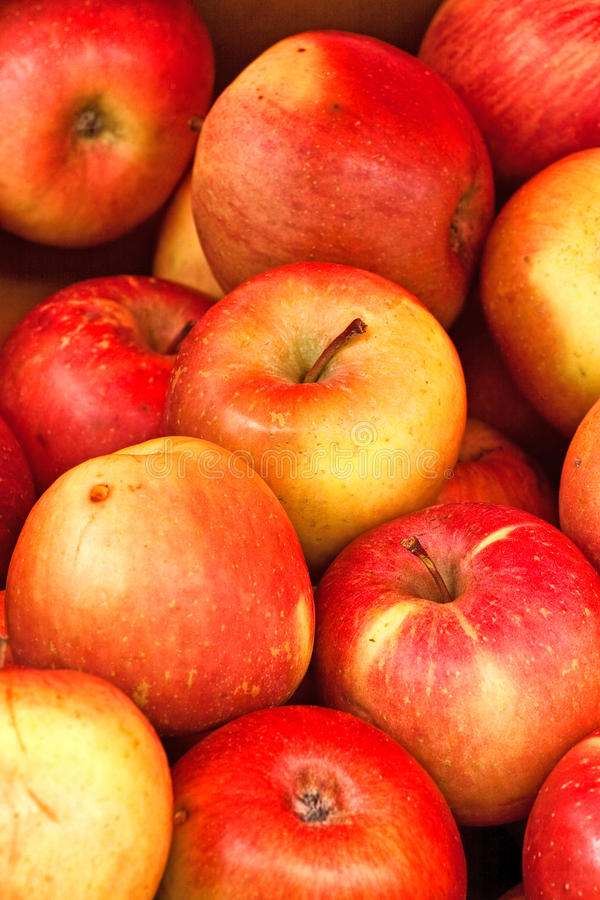 Download Apples stock photo. Image of healthy, apple, health, sell - 27944106