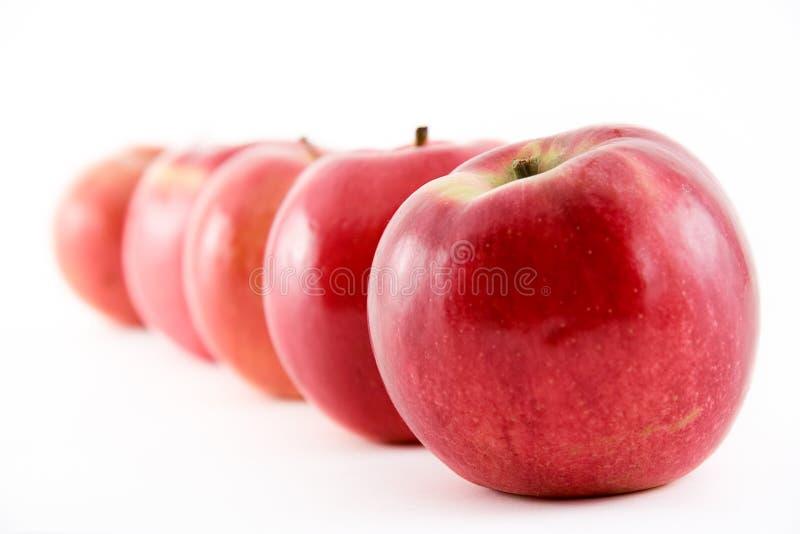 Download Apples stock photo. Image of diet, healthy, flavor, harvest - 315510