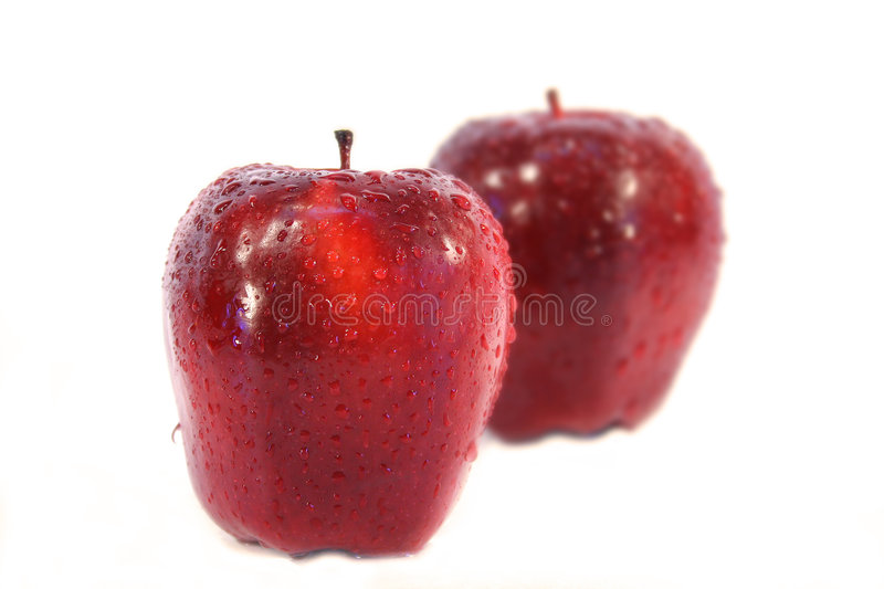 Apples. Isolated on white background royalty free stock photos