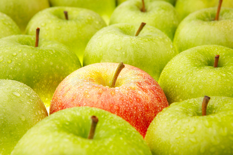 Download Apples stock image. Image of natural, ripe, nutrition - 7272427