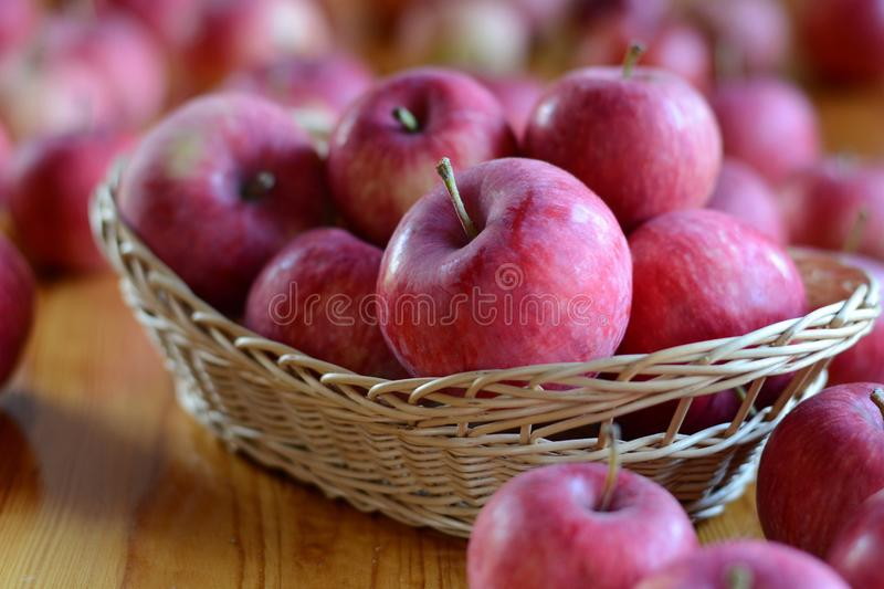 Apples in basket on wooden background. Harvest time, autumn, many red apples. Freshly picked summer apples. Apples in basket on wooden background. Harvest time stock images