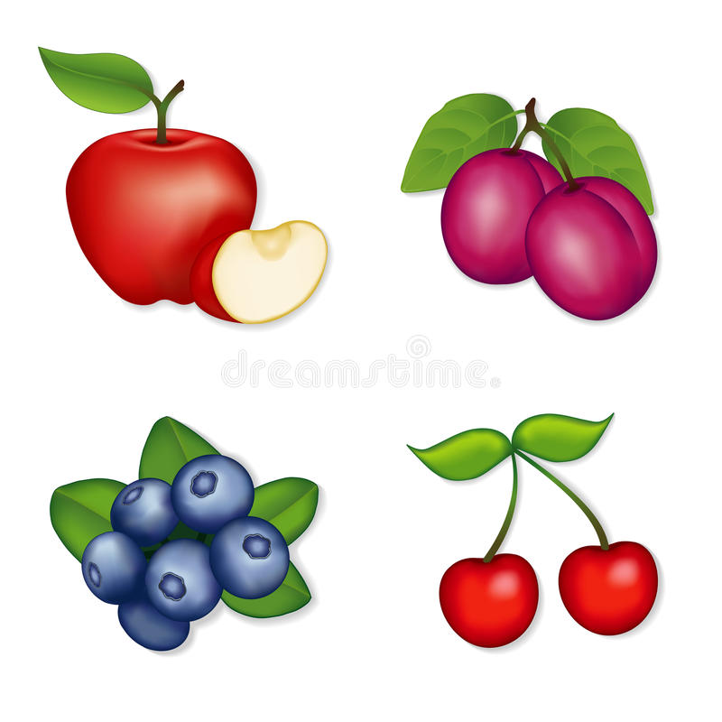 Apples, Blueberries, Cherries, Plums. Fresh orchard garden fruits. Illustrations isolated on white. EPS8 organized in groups for easy editing royalty free illustration
