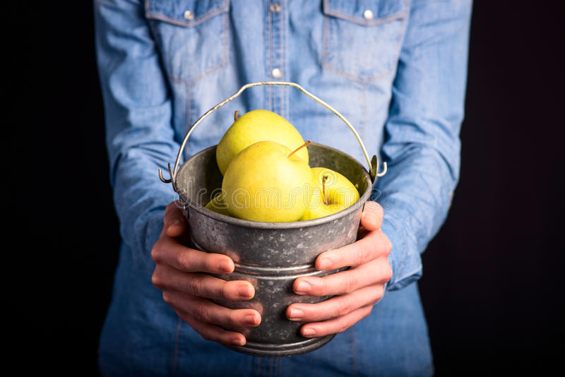 apples bucket in hands royalty free stock photography