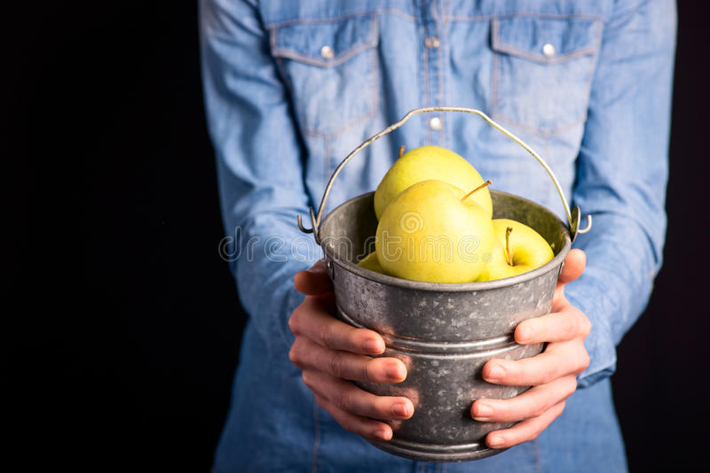 Apples bucket in hands royalty free stock photos