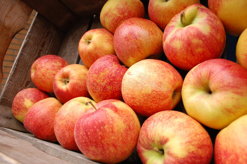 Download Apples Collection On The Market Stock Image - Image: 14693637