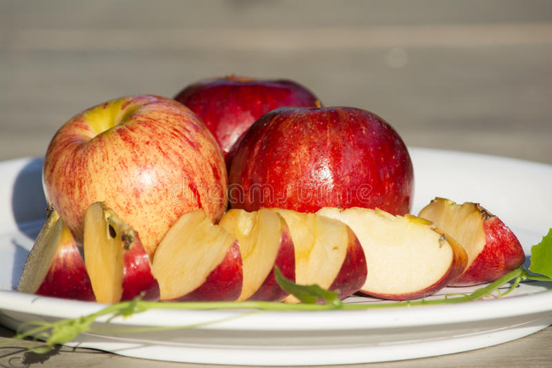 Apples in the dish royalty free stock photography