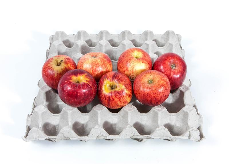 Download Apples in an egg case stock photo. Image of container - 32294392
