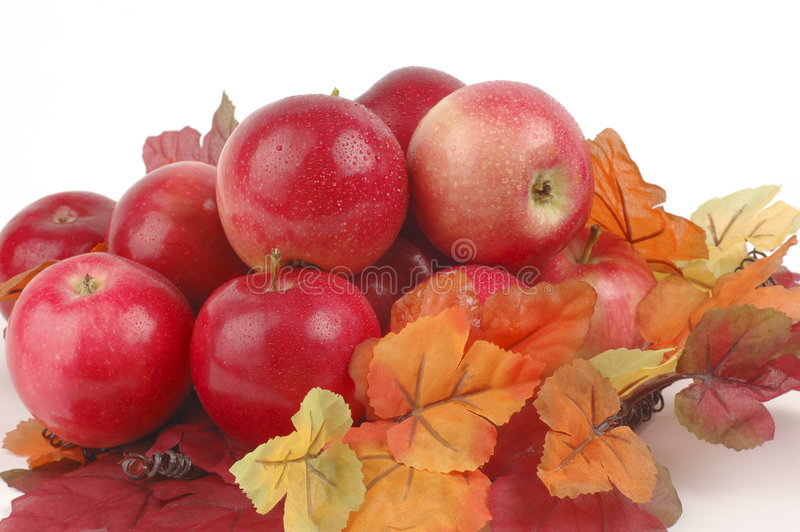 Download Apples and Fall Foliage stock image. Image of fall, natuaral - 3124125