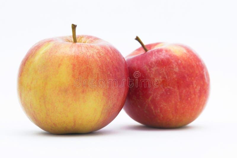 Apples. stock photos