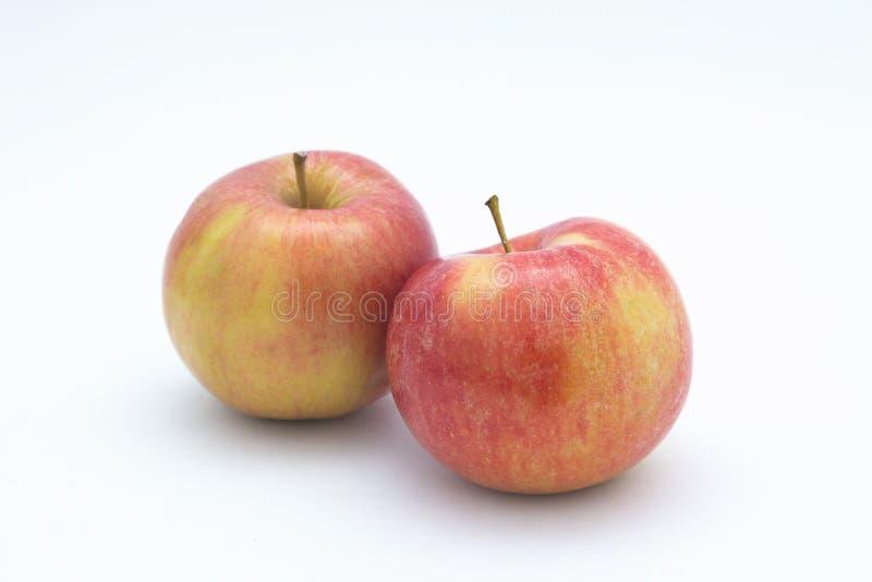 Apples. royalty free stock photo