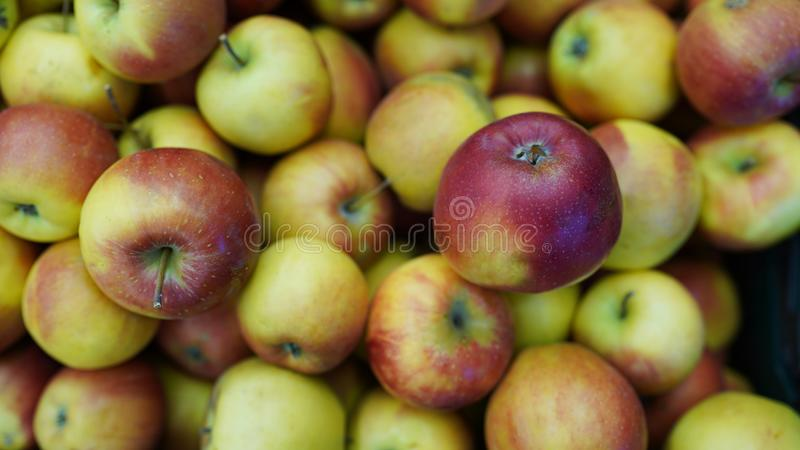 Apples full frame . Fresh apple texture in market. store background.  royalty free stock photos