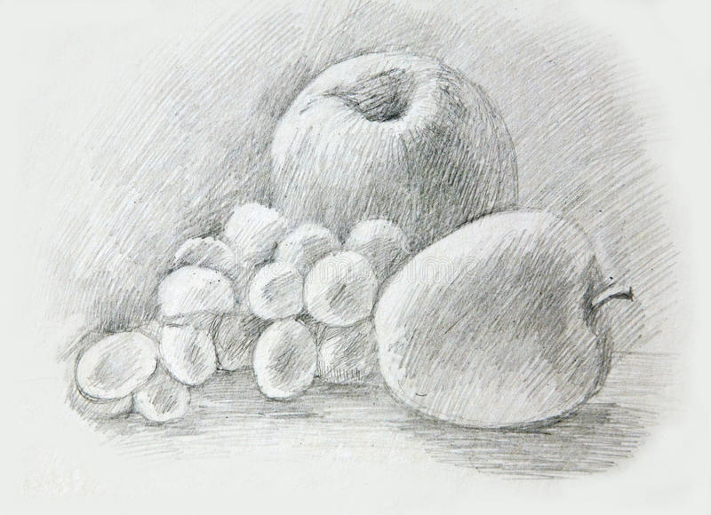 Download Apples Grapes Peah Pencil Drawing Stock Illustration