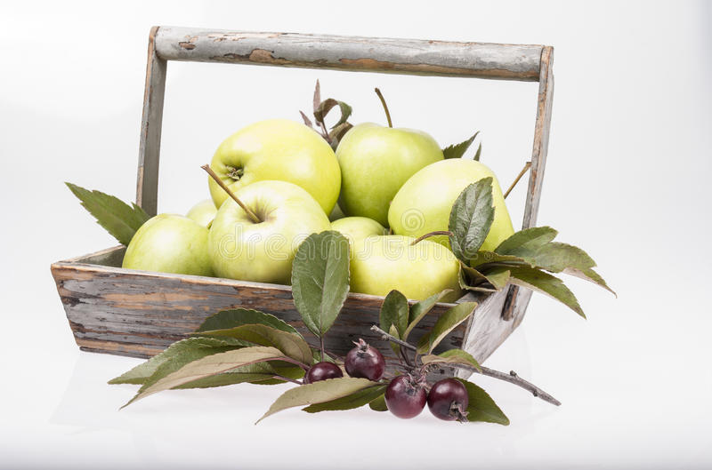 green apples in wooden square basket royalty free stock photography