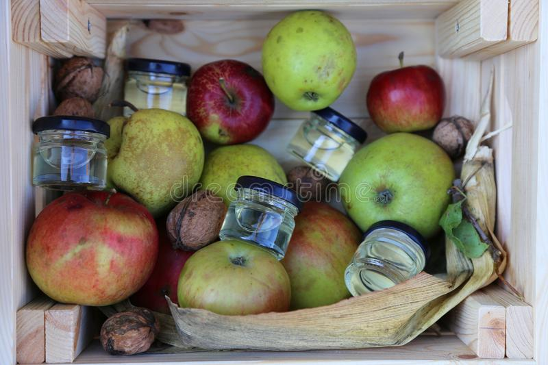 Apples, honey and nuts stock images