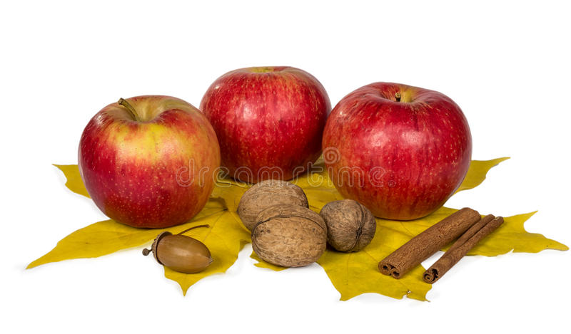 Apples, nuts and acorns in autumn maple leaves. Isolated on white background. Close-up. Autumn theme royalty free stock images