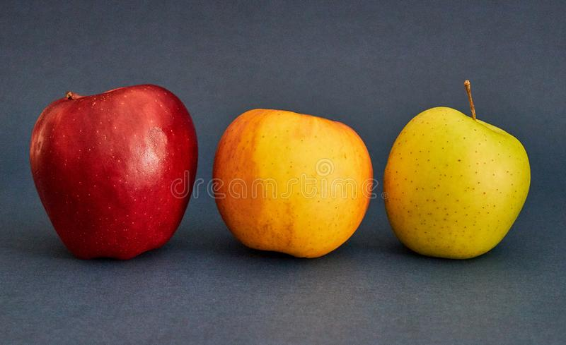 Beautiful apples of three colors. Apples in order in three colors, green, yellow and reddish stock image