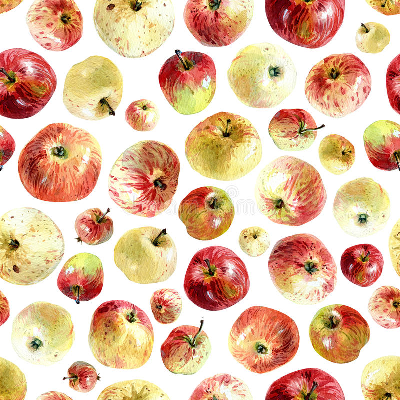 Apples pattern. Seamless pattern of apples painted with watercolours royalty free stock image