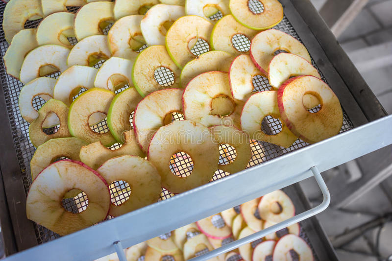Apples are placed in a dryer royalty free stock photo