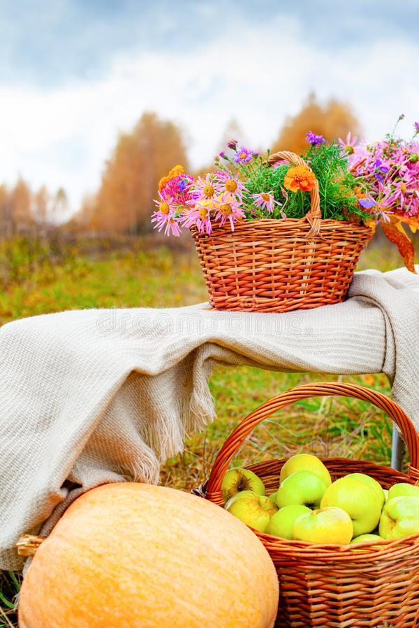 Apples, pumpkin, autumn flowers in a basket. Beautiful picture for the autumn mood. Selective focus royalty free stock photos