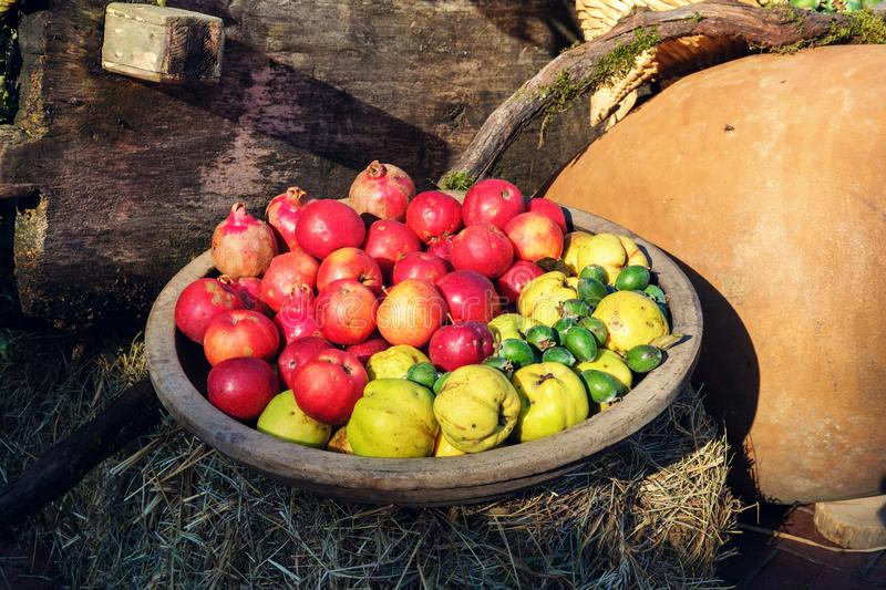 Fruits in the wooden bowl royalty free stock photo