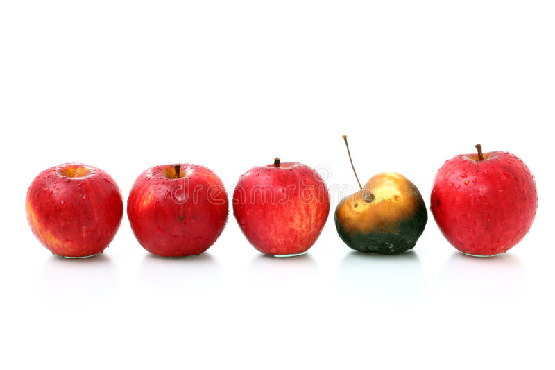 Apples in a row. Four red fresh apples apples and one old apple placed in a line royalty free stock photography