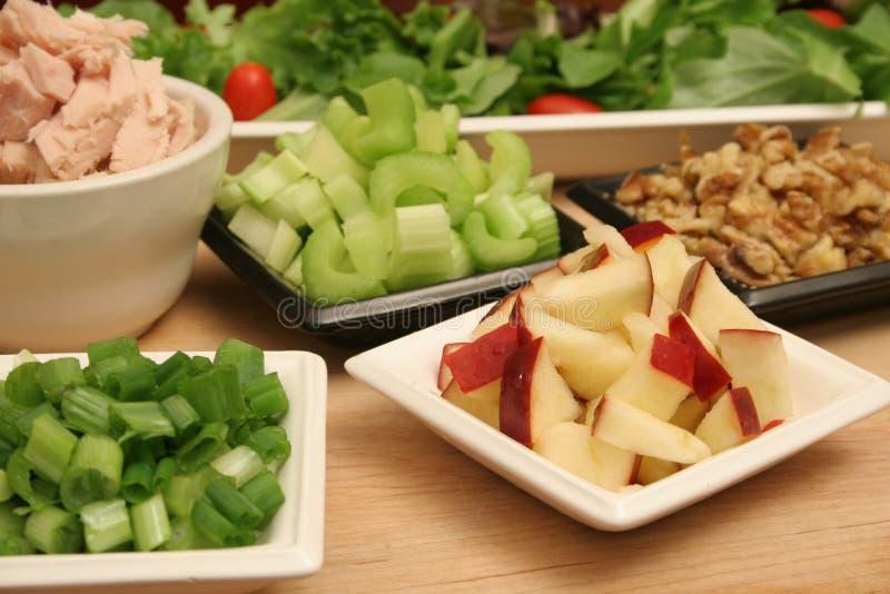 Download Apples tuna walnut salad stock photo. Image of eating - 1724090