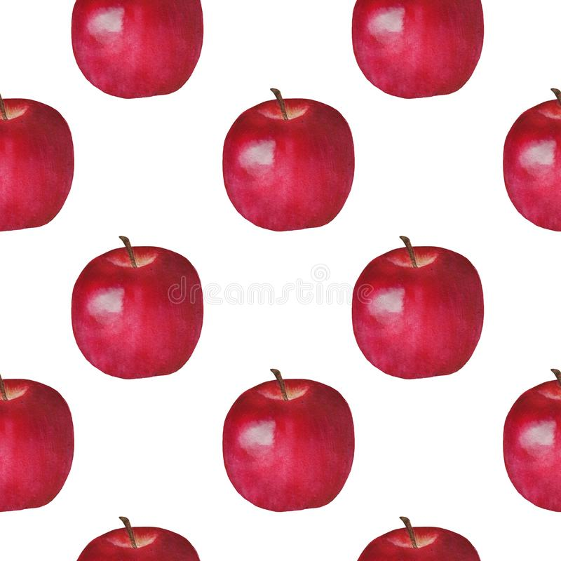 Apples Watercolor Fruits Pattern Digital paper seamless illustration set of summer botanical decorations greeting card design. Illustration Apples Watercolor vector illustration