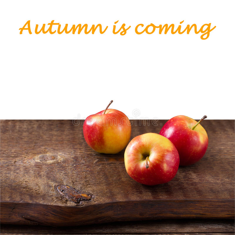 Apples on wooden table over autumn landsape stock images