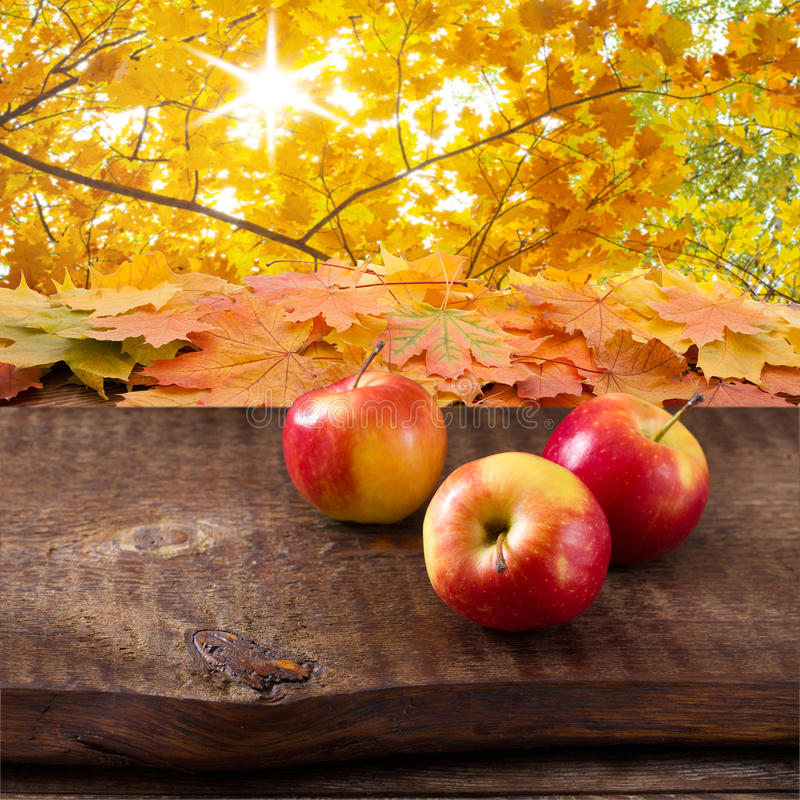 Apples on wooden table over autumn landsape stock photo