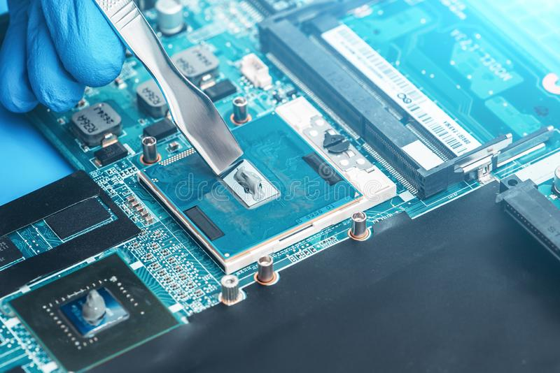 Application Of Thermal Paste On The Laptop Processor Chip