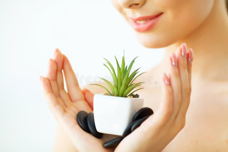 applicera genomskinlig fernissa för omsorgshud kvinna för skuggning för leaf för härlig framsidagreen half Var royaltyfri foto