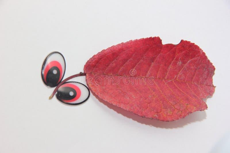 Applique d'un matériel naturel avec les yeux, créature étrange, yeux expressifs sur un fond blanc photo libre de droits