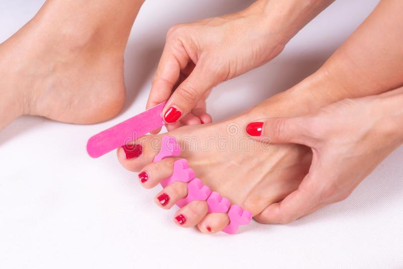 Applying pedicure to woman`s feet with red toenails, in pink toe separators. stock photo