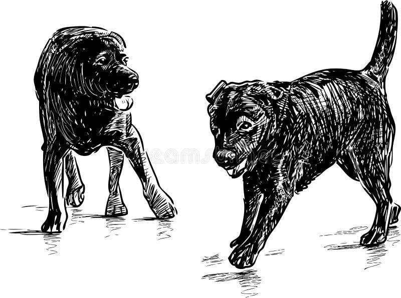 apportörvalpar royaltyfri illustrationer