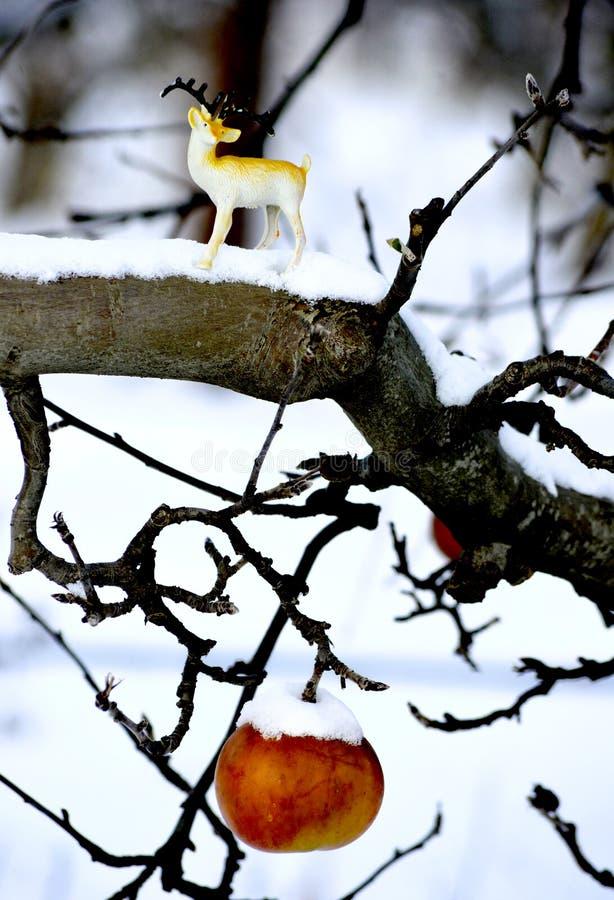 appple- och hjortstatyett på en dold äpplefilial för snö fotografering för bildbyråer