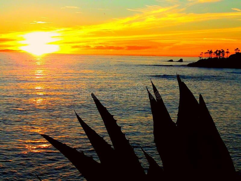 Apprécier le coucher du soleil du parc de Heisler dans le Laguna Beach la Californie images libres de droits