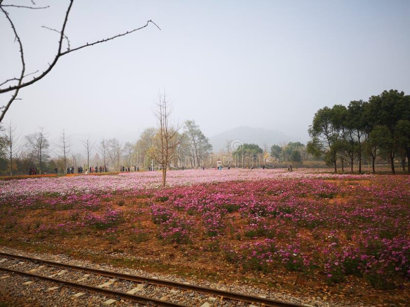 Apprécier le week-end pour Huzhou de déplacement image libre de droits